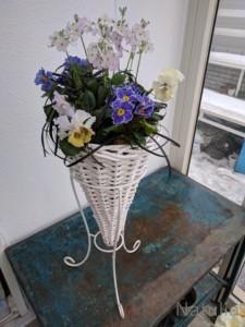 お久しぶりのお花です。寒ーい2月