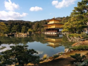 京都・大阪冬の旅